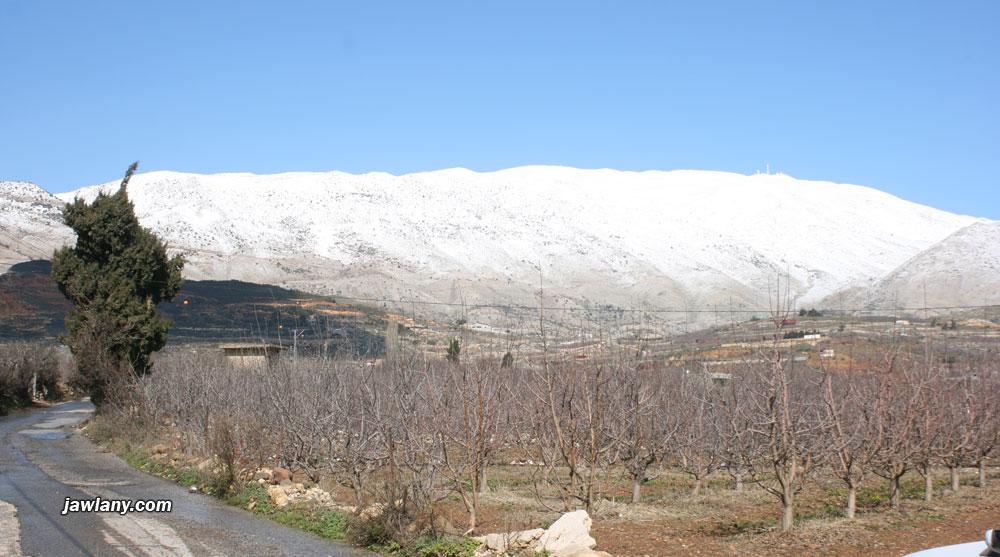 جبل الشيخ